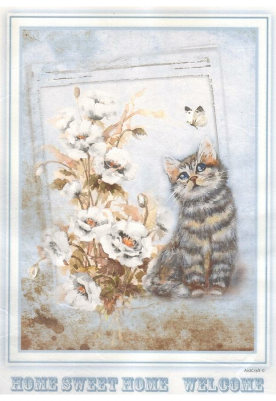 Rizspapír-cica