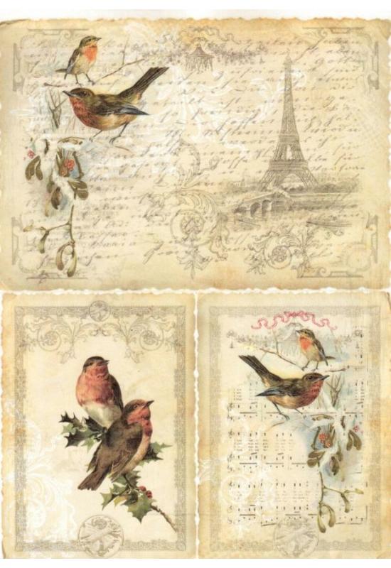 Rizspapír-Páris, madarak