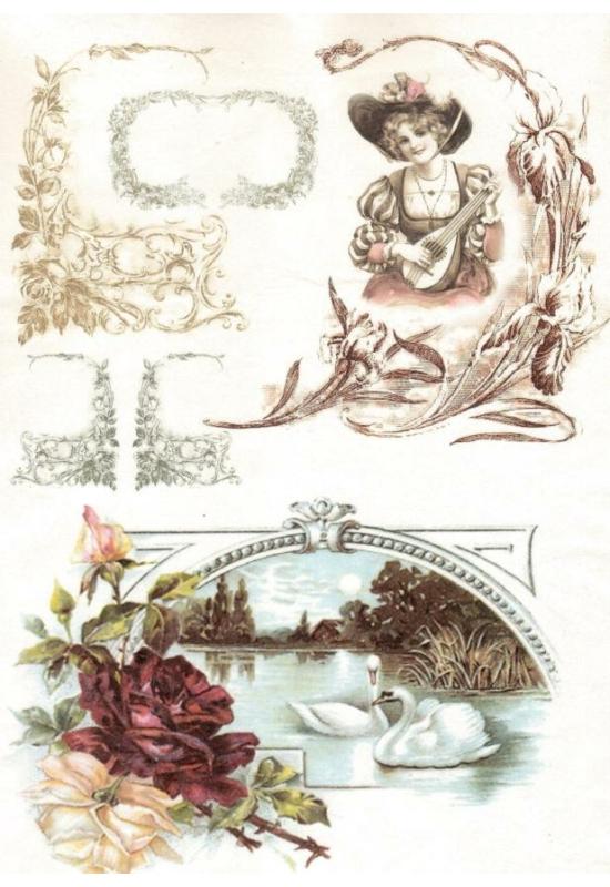 Rizspapír-Nő, hattyúk