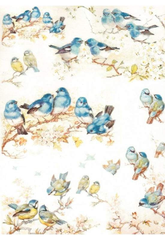 Rizspapír-kék madarak