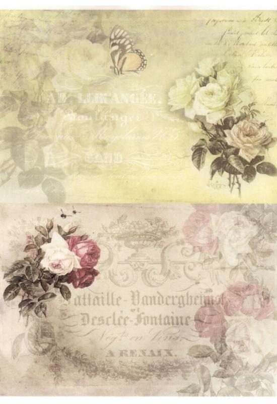 Rizspapír-madarak, rózsa