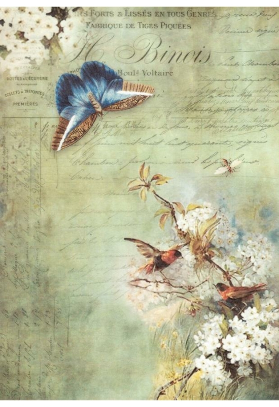 Rizspapír-madarak