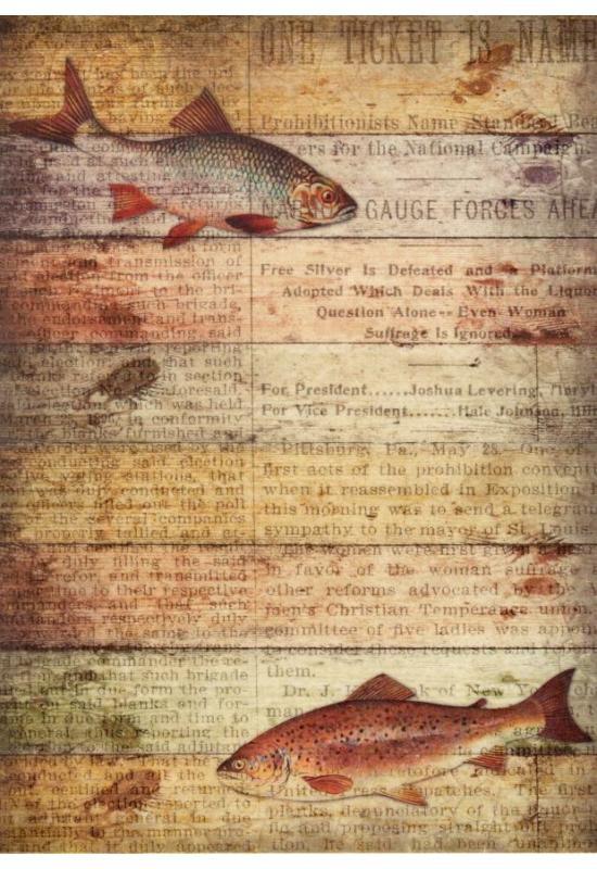 Rizspapír-halak