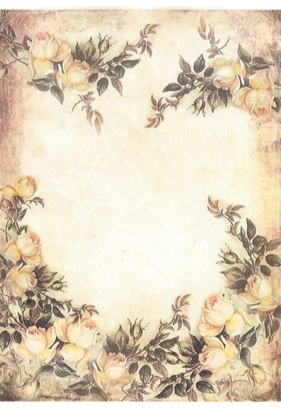 Rizspapír-rózsabokor